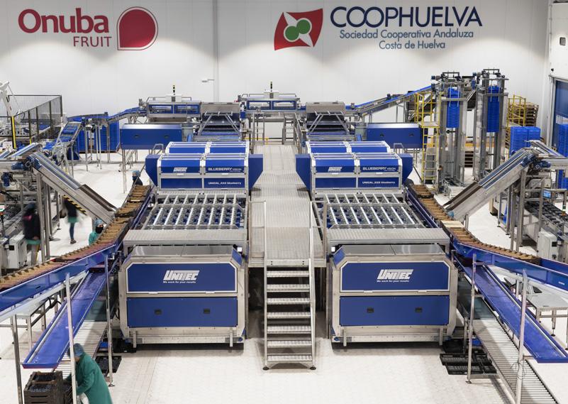 linee, macchine e impianti lavorazione frutta