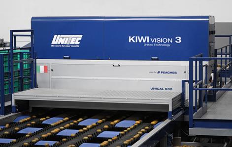 Macchine calibratrici per la lavorazione del Kiwi